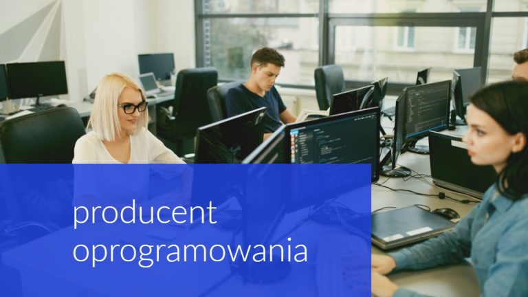 producent oprogramowania